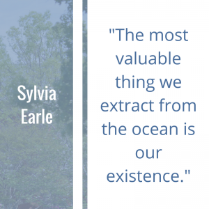 "Quote of the Week by Sylvia Earle: ""The most valuable thing we extract from the ocean is our existence."""