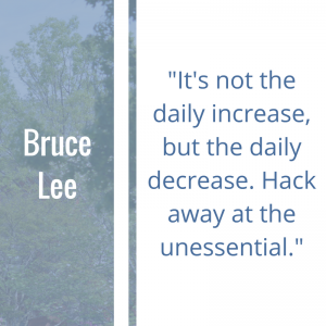 """Quote of the Week by Bruce Lee """"It's not the daily increase but daily decrease. Hack away at the unessential."""""""