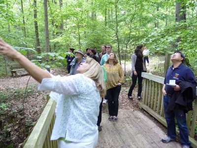 Photo of The Fall Line Workshop Participants Explore the Trees