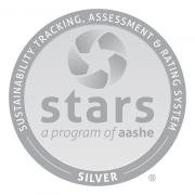 Silver Stars Logo