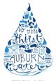 Logo for Auburn for Water