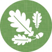 Grounds Icon