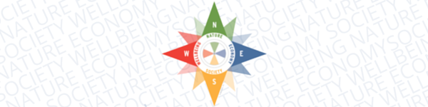 Director's Corner: The Sustainability Compass: Systems Thinking, Prisms, & Tapestries