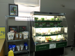 Photo of fresh, local produce in the all new Terrell Market located at the Hill.