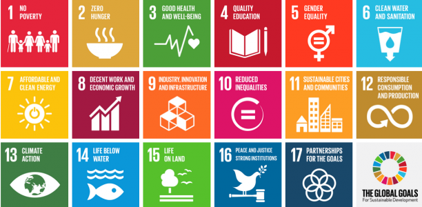 Graphic of the 17 UN Sustainable Development Goals