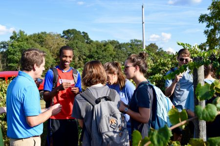 """Students in """"Introduction to Sustainability"""" course check out the muscadine vines."""