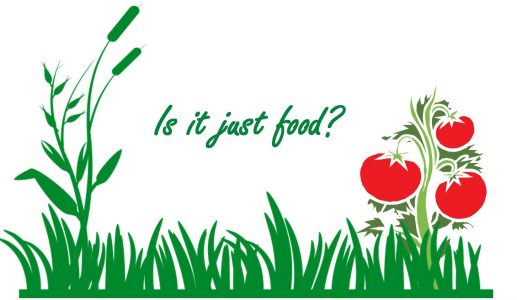 Graphic of No Impact's Week Is it Just Food Symposium