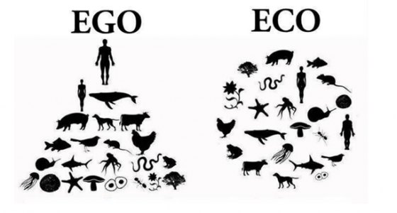 """Systems thinking requires changing from an Egocentric to an Ecocentric worldview, reflecting Aldo Leopold's Land Ethic, which he articulated in the 1940s: Changing the role of Homo sapiens """"from conqueror of the land community to plain member and citizen of it."""""""