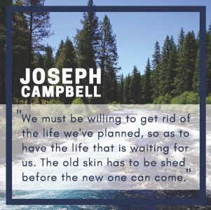 """Quote of the week by Joseph Campbell """"We must be willing to get rid of the life we've planned, so as to have the life that is waiting for us. The old skin has to be shed before the new can come in."""""""