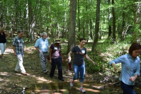 Photo of Faculty on Forest Exercise