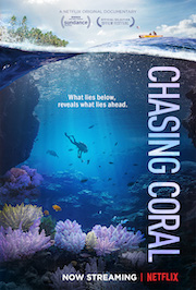 Chasing-Coral-Cover