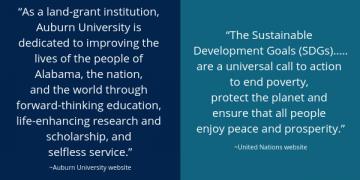 AU Strategic Plan and SDG quotes