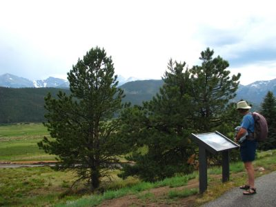 Visitor reading an interpretive sign along a trail.