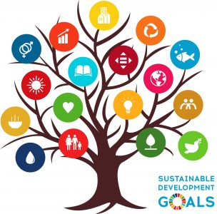 A colorful tree of the SDGs.