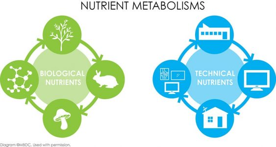A diagram of nutrient metabolisms. Biological nutrient diagram painted in green on the left, technical nutrients in blue on the right.