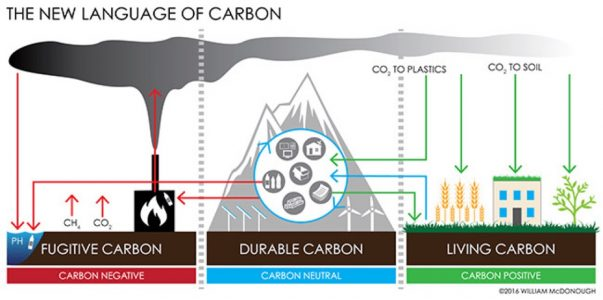 The New Language of carbon graph