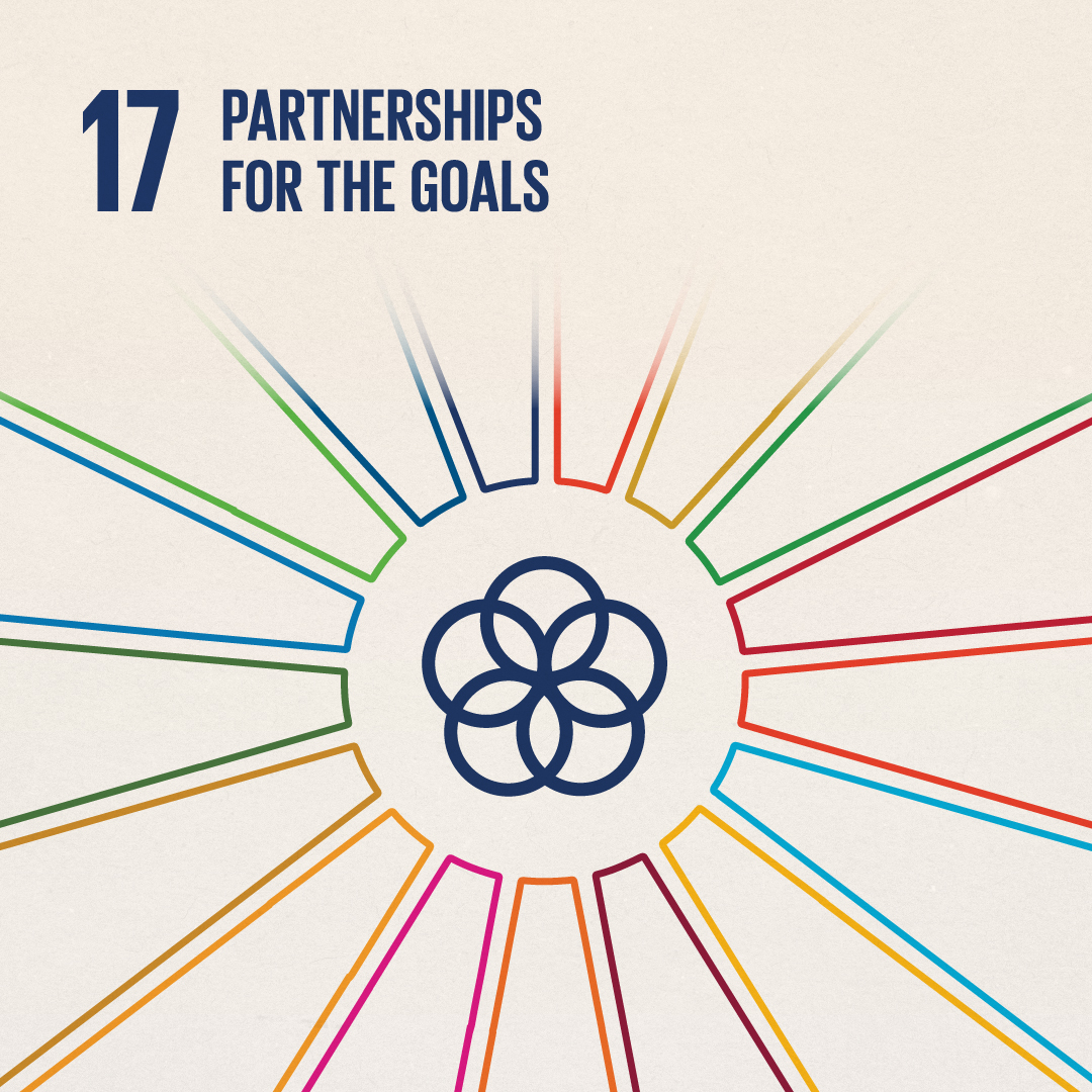 SDG 17: Partnerships for the Goals, example of poster by Lane Mullins
